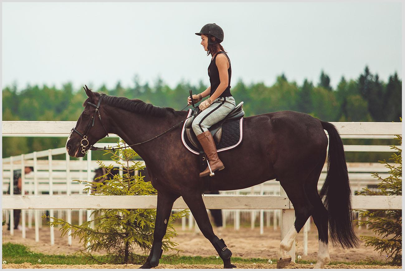 馬に乗った女性の画像