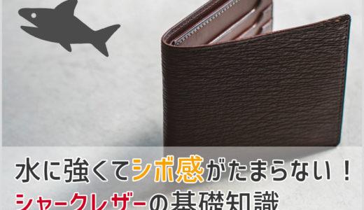 【革の知識】サメ革の財布が欲しい人必見! シャークレザーの基礎知識